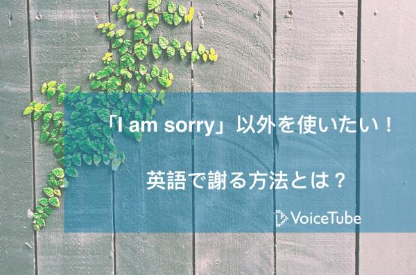 英語 謝る I am sorry 以外 apologize