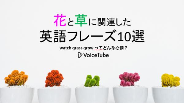植物 英語 花 英語フレーズ