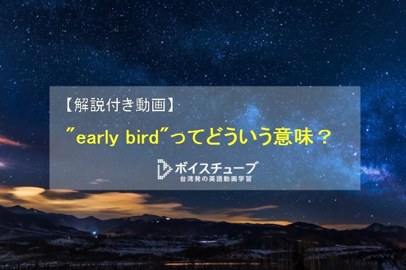 体内時計 英語 夜更かし 英語 early bird night owl
