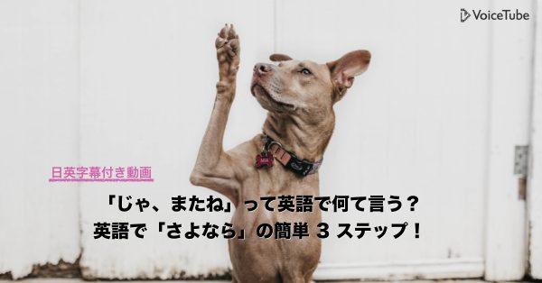 またね 英語 さよなら 英語 good bye