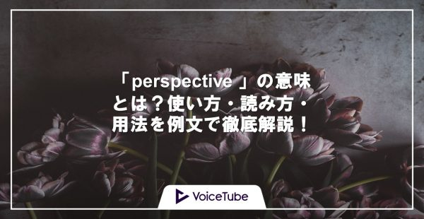 perspective 意味 使い方