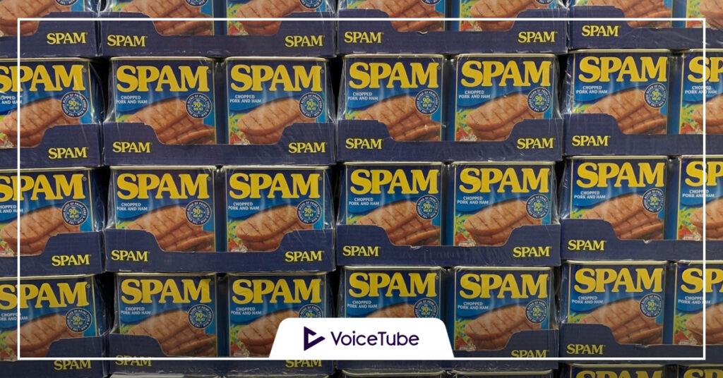 spam 意味 使い方